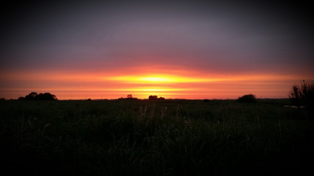 Sonnenaufgang an der Abelitz