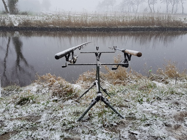 Rodpod im Schnee2